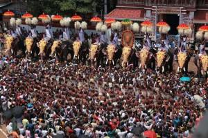 Elephant Festival Kerala